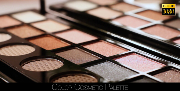 Color Cosmetic Palette 2