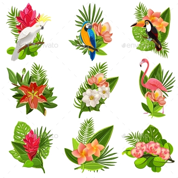 GraphicRiver Tropical Birds and Flowers Pictograms Set 11380493