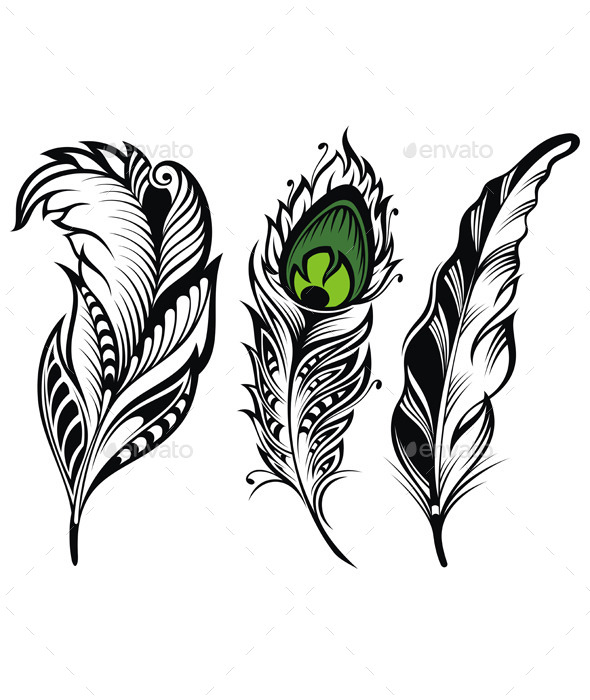 GraphicRiver Vector Isolated Feathers 11382080