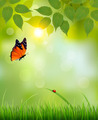 Nature summer background with leaves and grass.  - PhotoDune Item for Sale