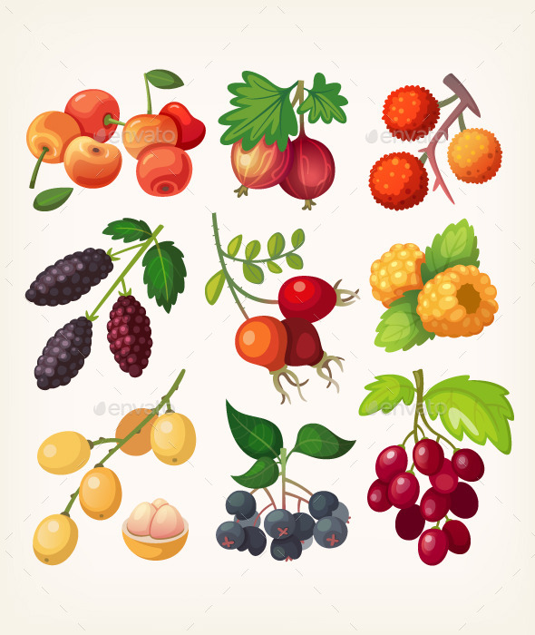 GraphicRiver Juicy Colorful Berry Icons 11386677