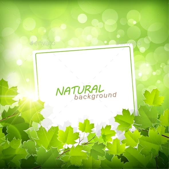 GraphicRiver Natural Green Background 11387214