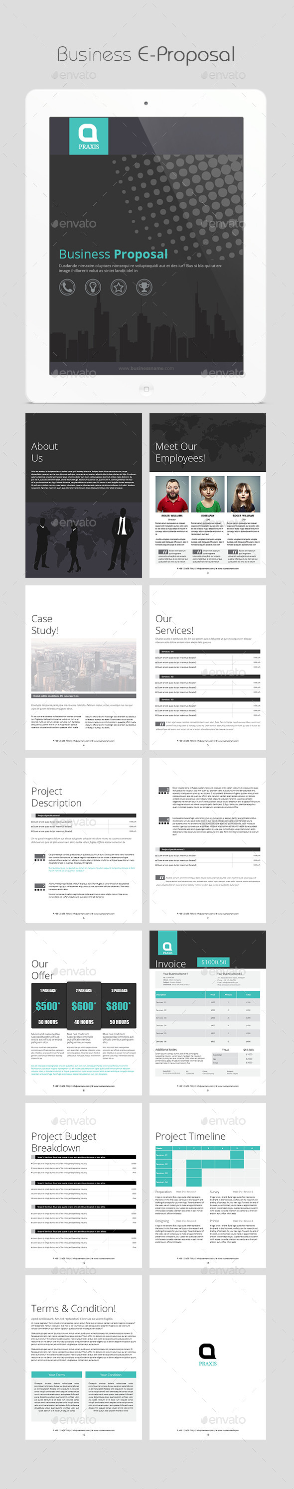 GraphicRiver Business E-Proposal 11392311