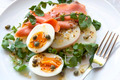 Smoked Salmon Salad with Eggs Potatoes Watercress and Capers - PhotoDune Item for Sale