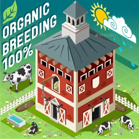 GraphicRiver Isometric Cowshed Organic Breeding 11395401