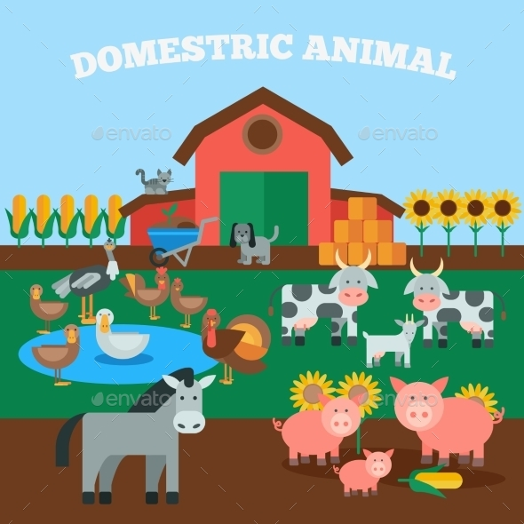 GraphicRiver Domestic Animals Concept 11396466