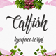 CatFish Font Script - GraphicRiver Item for Sale