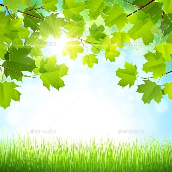 GraphicRiver Natural Background 11401349