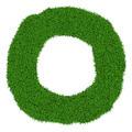 Grass frame - PhotoDune Item for Sale