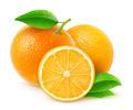 Fresh oranges - PhotoDune Item for Sale