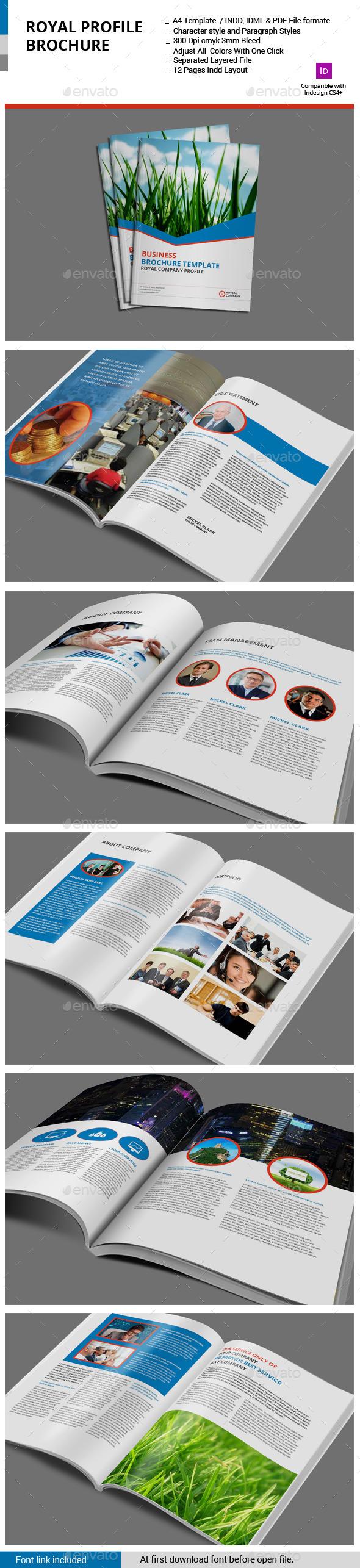 GraphicRiver Royal Profile Brochure 11405952