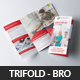 Creative Corporate Business Trifold Brochures - GraphicRiver Item for Sale