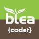 bteacoder