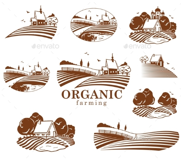 GraphicRiver Organic Farming Design Elements 11408712