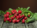 fresh radish and cucumber - PhotoDune Item for Sale
