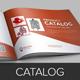 Product Promotion Catalog InDesign Template v3 - GraphicRiver Item for Sale
