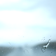 Raindrops on Windshield - VideoHive Item for Sale