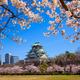 Osaka castle, Osaka, Japan - PhotoDune Item for Sale