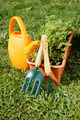 Gardening tools with watering can and a box of seedling on green grass - PhotoDune Item for Sale
