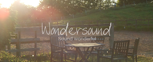 Wondersound-logo-box-banner2