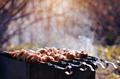 Grilling shashlik - PhotoDune Item for Sale