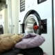 Worker Loads Dirty Clothes In Washing Machine - VideoHive Item for Sale