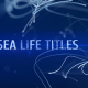 Sea Life Titles - VideoHive Item for Sale
