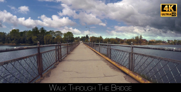 VideoHive Walk Through The Bridge 11416753