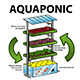 Aquaponic System - GraphicRiver Item for Sale