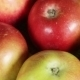Apples In Basket - VideoHive Item for Sale