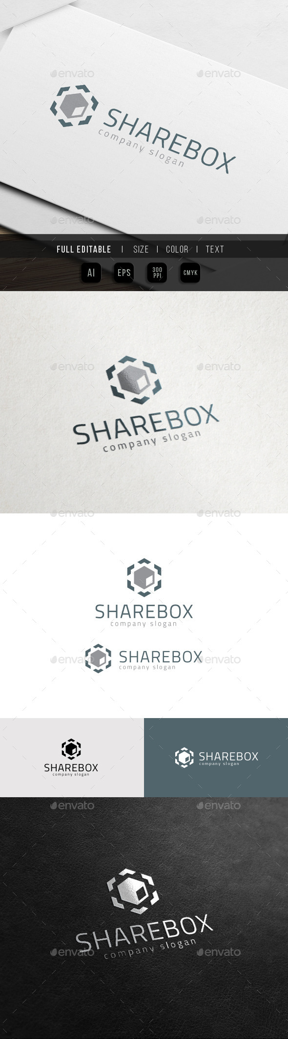 GraphicRiver Share Box Cloud Hosting Logo 11423626