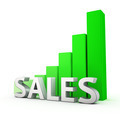 Growth of Sales - PhotoDune Item for Sale