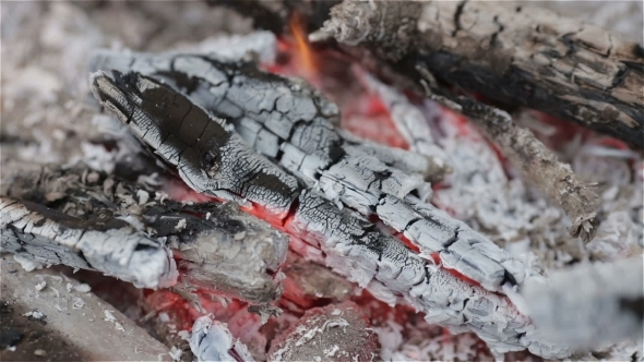 VideoHive Campfire In Rock Fire Ring 11426634