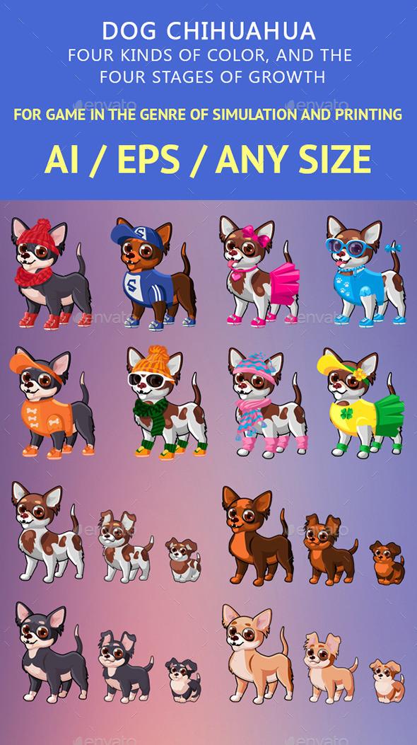 GraphicRiver Dog Chihuahua 11365650