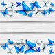 Blue and White Butterflies on Wooden Background - GraphicRiver Item for Sale