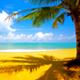 Hawaiian Jingle - AudioJungle Item for Sale