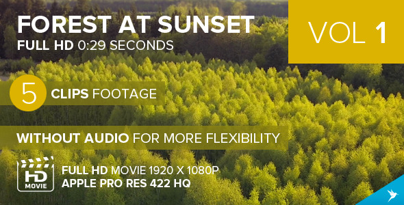 VideoHive Flying Over the Forest by Sunset VOL1 11445056