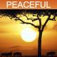 Africa - AudioJungle Item for Sale