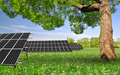 Spring tree with solar energy panels - PhotoDune Item for Sale