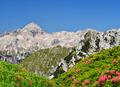 Julian Alps, Slovenia  - PhotoDune Item for Sale