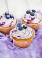 Tasty blueberry cupcakes
