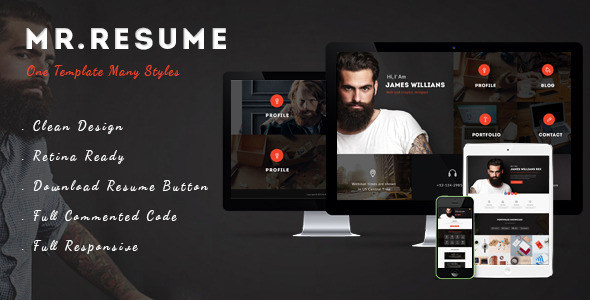 ThemeForest Mr.Resume One Page Resume Personal HTML Template 11394509