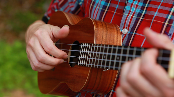 Play Ukulele In Forest