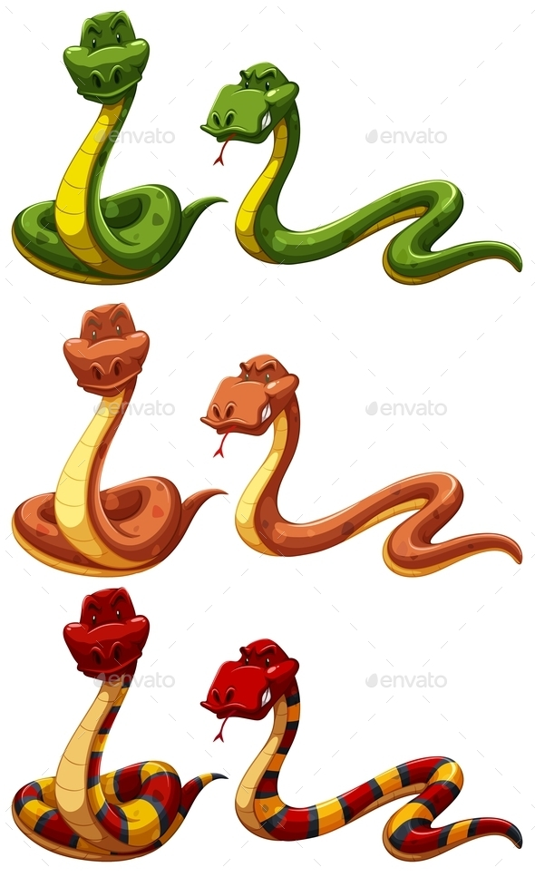 GraphicRiver Snakes 11452827