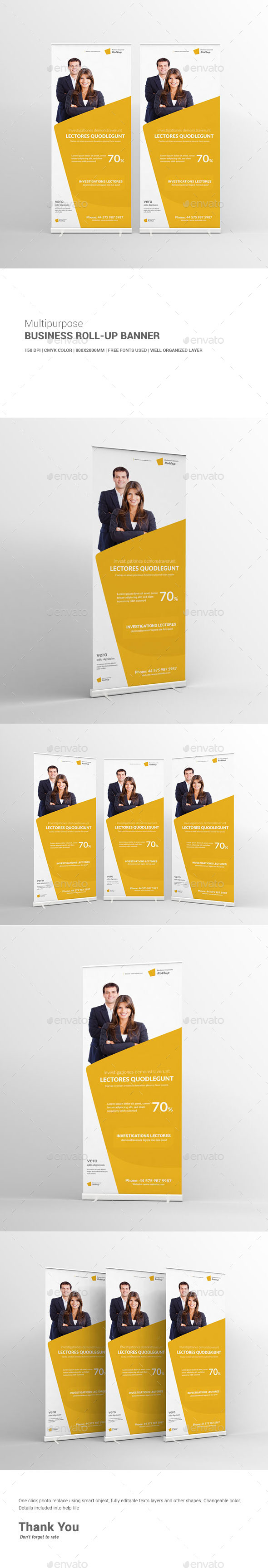 GraphicRiver Multipurpose Business Roll-Up Banner 11453069