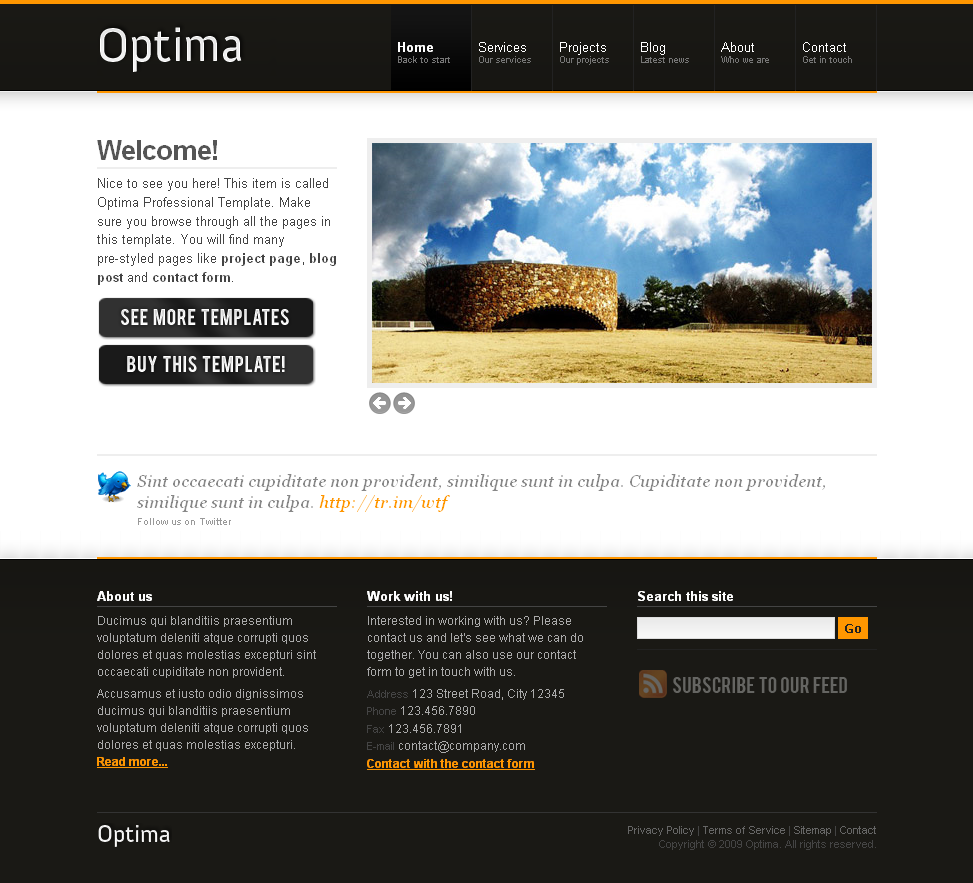 Optima Professional Template - Homepage