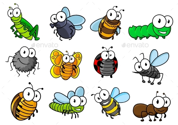 GraphicRiver Colorful Set Of Cartoon Insects Characters 11455500