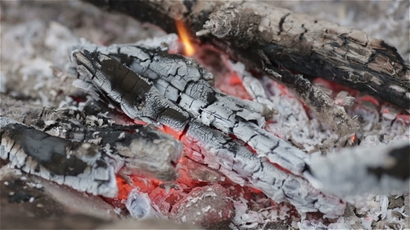 VideoHive Campfire In Rock Fire Ring 11457259