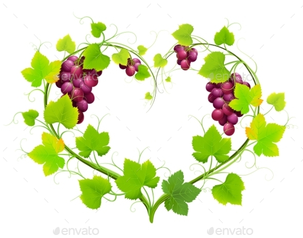 GraphicRiver Grapes With Leaves 11457850
