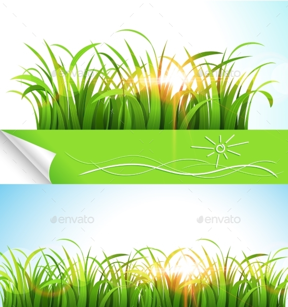 GraphicRiver Green Grass 11458002